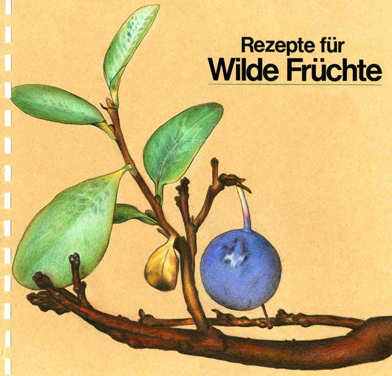 Illustration, Rezeptbuch Wilde Früchte